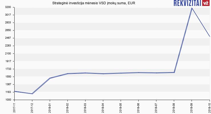 strateginė investicija)