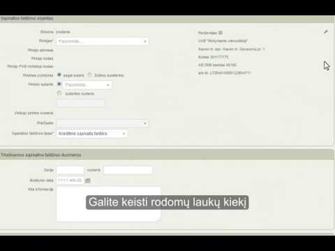 demonstracinė sąskaita pasirinktinai)