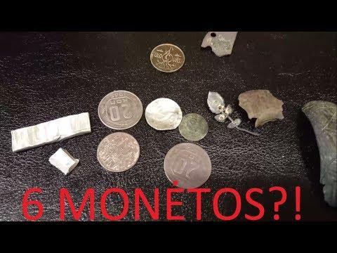 vietinių monetų mokymai)